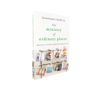 The Ministry of Ordinary Places Free Chapter