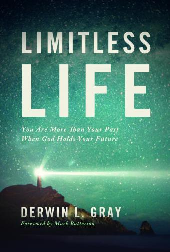 Advance Free Chapter from 'Limitless Life'